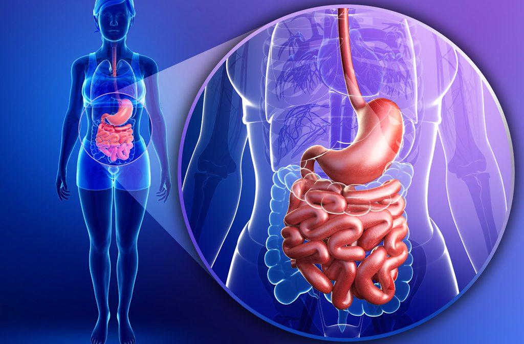 גזים בבטן